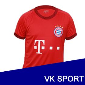 Vikingo Sport